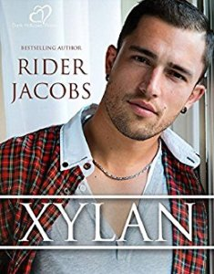 xylan-cover-italian-edition
